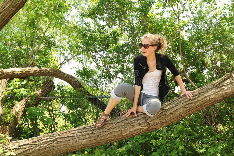 Download Sit on a branch stock photo. Image of outside, outdoors - 26504820