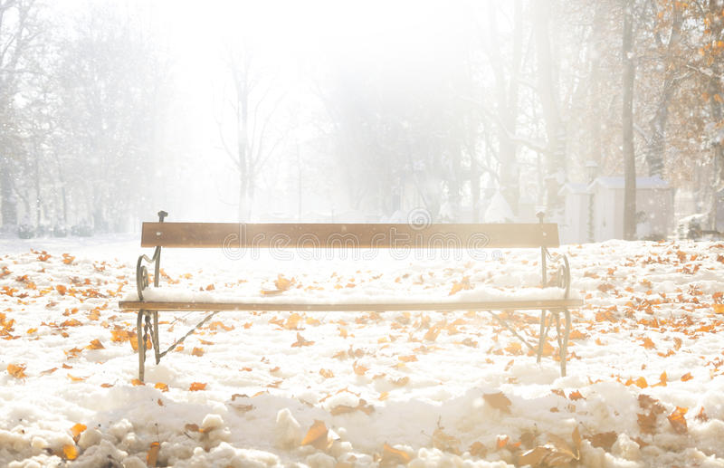 Sit down and enjoy winter. Sunny winter bench in a park in Zagreb, Croatia stock photo