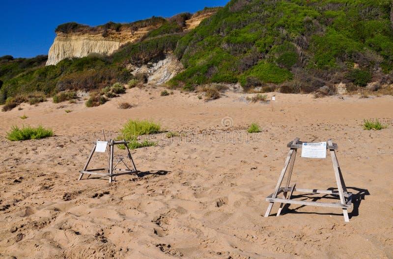 Site de reproduction de tortue de mer d'imbécile image libre de droits