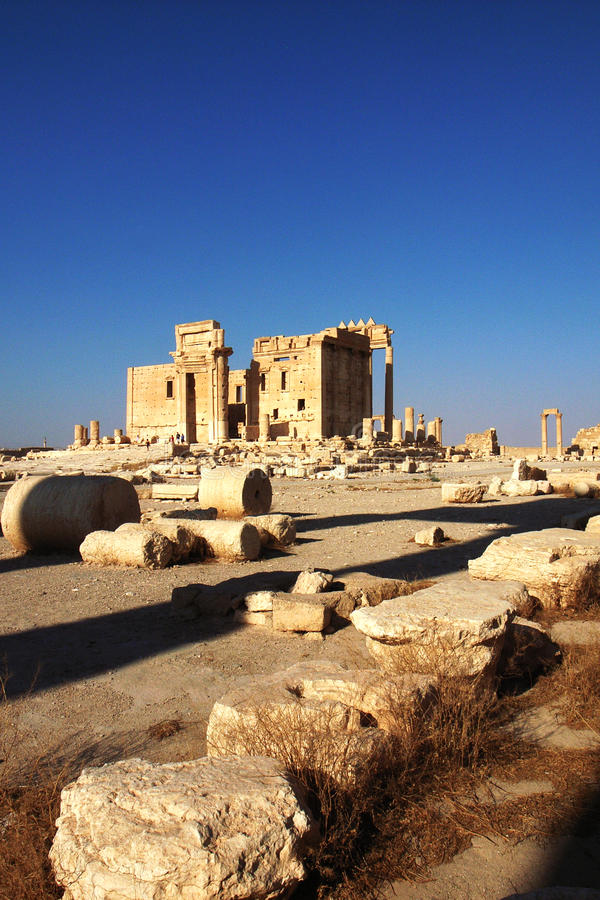 Site of Palmyra,Syria royalty free stock photos