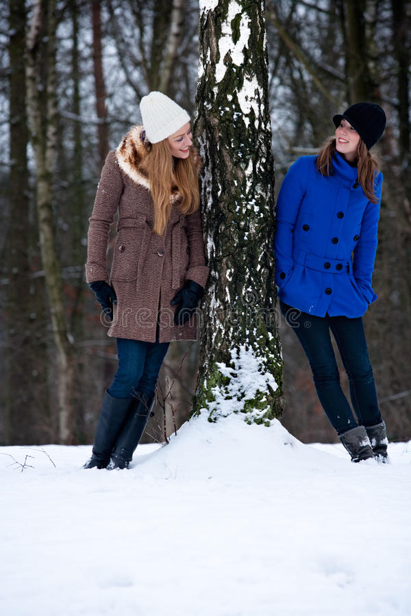 Siters standing against a winter tree royalty free stock images