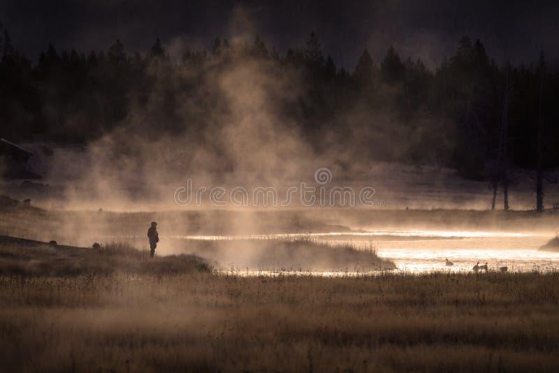 Siteseeing над озером с гусынями испаряется вода и золотая солнечность стоковое изображение