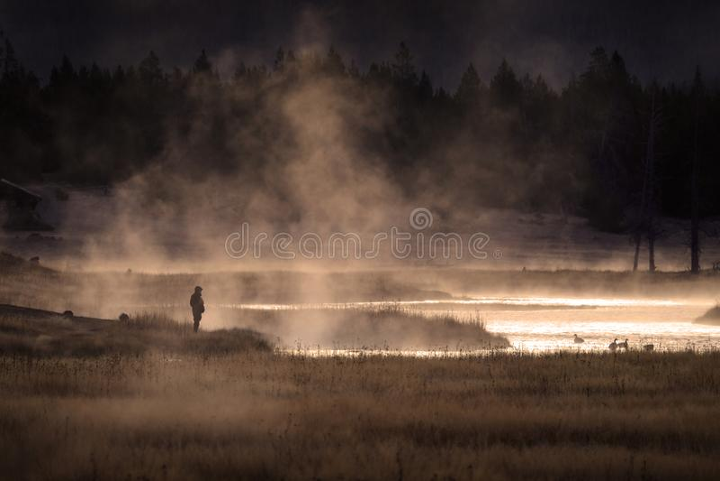 Siteseeing sobre el lago con los gansos cuece el agua y la sol al vapor de oro imagen de archivo