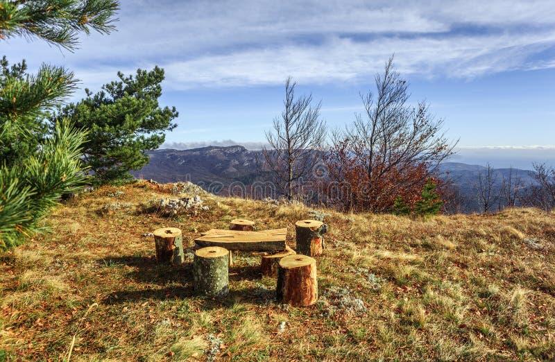 Sitio de los bancos de madera, de la tabla y de la hoguera en el claro cerca del pino tr imagen de archivo libre de regalías