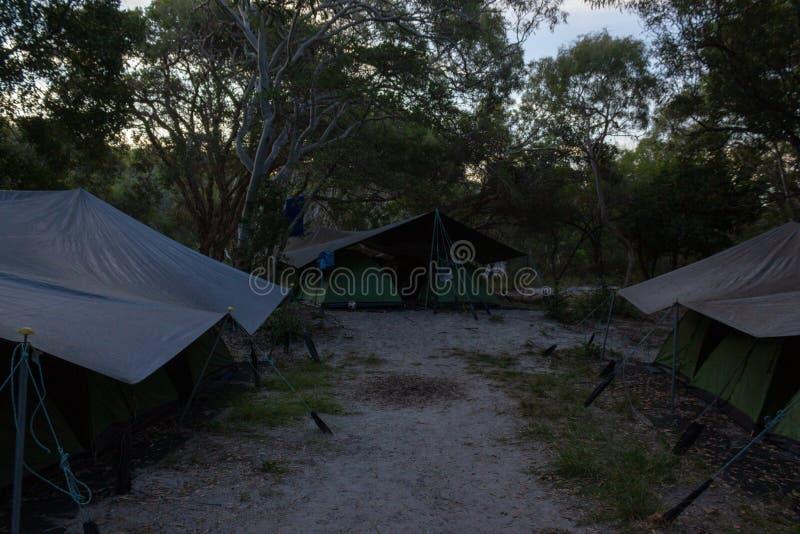Sitio para acampar reservado en Fraser Island, la isla m?s grande del mundo fuera de la arena, Queensland imagen de archivo