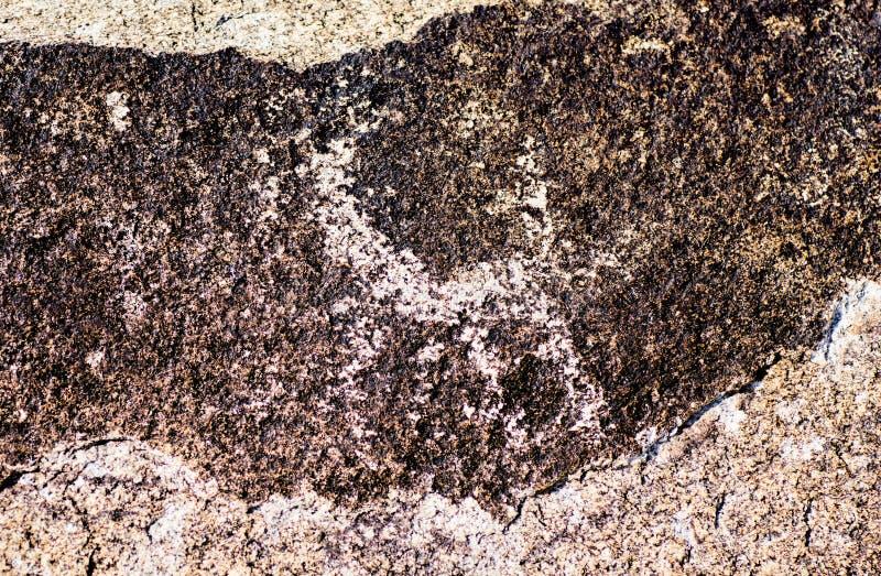 Sito antico con i petroglifi storici nel Kirghizistan fotografie stock