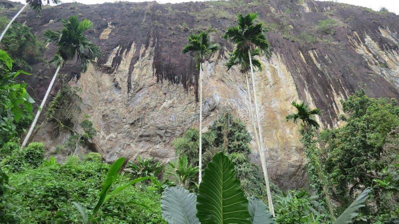 Sito antico della caverna dello scavo in pahiyangala Sri Lanka immagini stock