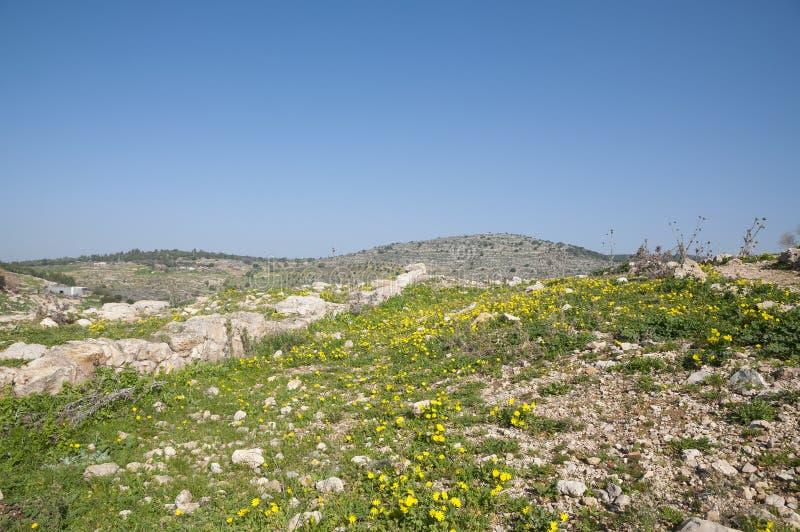Sito di Yodfat antico, monticello di Yodfat fotografia stock