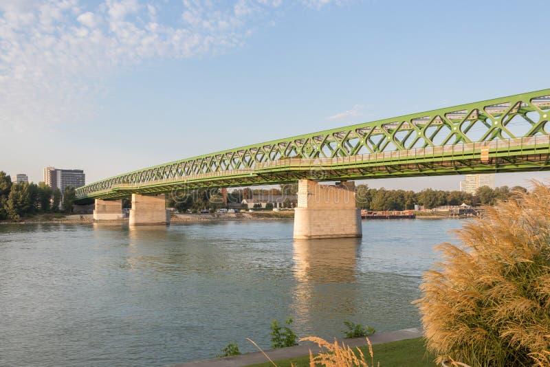 Sitta vid Donauen och tycka om för flod sikten, Bratislava, Slovakien royaltyfri bild