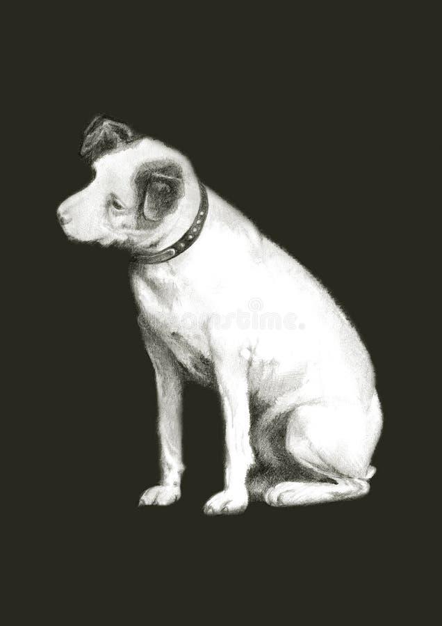 Sittande hund royaltyfri foto
