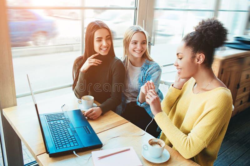 Sitter talar unga kvinnor för träd tillsammans i ett litet kafé med stora fönster och med de Ett av dem är arkivfoton
