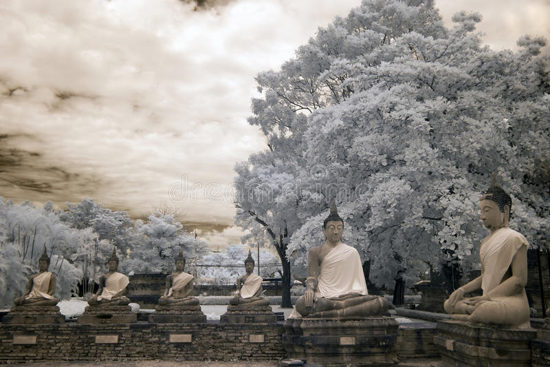 Sitting Buddha Dhamma preaching meeting royalty free stock photo