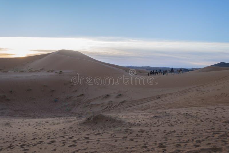 Sitting on the camels in Sahara desert, Erg Chebbi, Merzouga, Morocco. People sitting on the camels in Sahara desert, Erg Chebbi, Merzouga, Morocco stock image