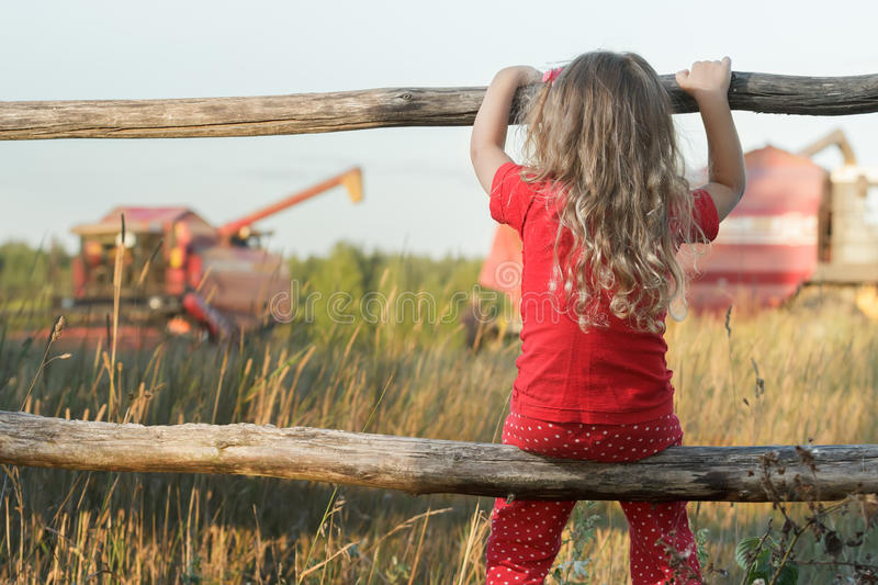 Sitting girl observing farm field with red working combine harvester stock photography