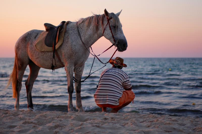 Sitting man with standing horse on the beach by the sea at sunset. stock photography