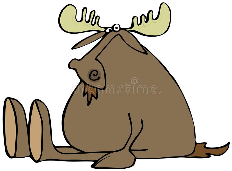 Sitting Moose Stock Images