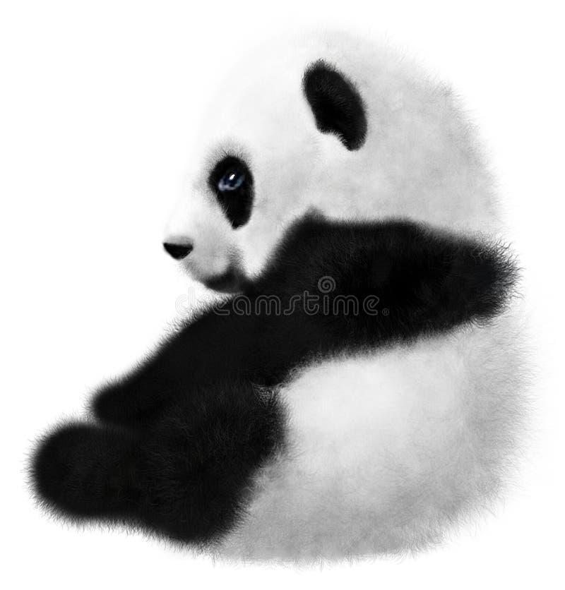 Sitting Panda cub on a white background. Sitting Panda cub isolated on a white background royalty free illustration