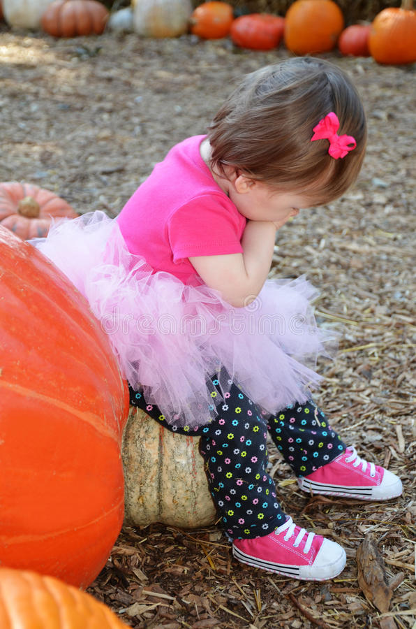 Download Sitting on Pumpkin stock image. Image of cute, contemplation - 28273051