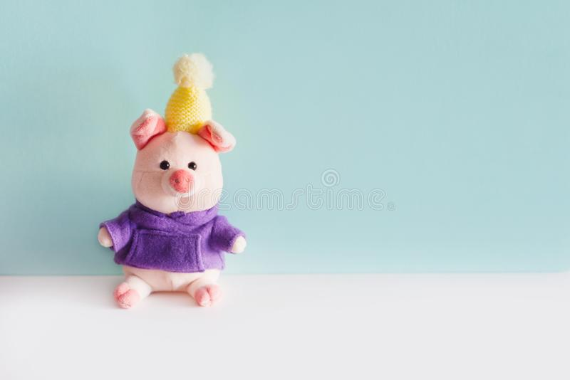 Sitting soft pink piggy toy on blue background stock photography