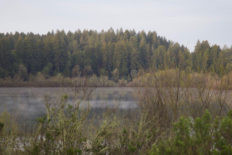Situé le long de la rivière russe, le parc régional de façade d'une rivière est juste des minutes de Windsor et de Healdsburg du  image stock
