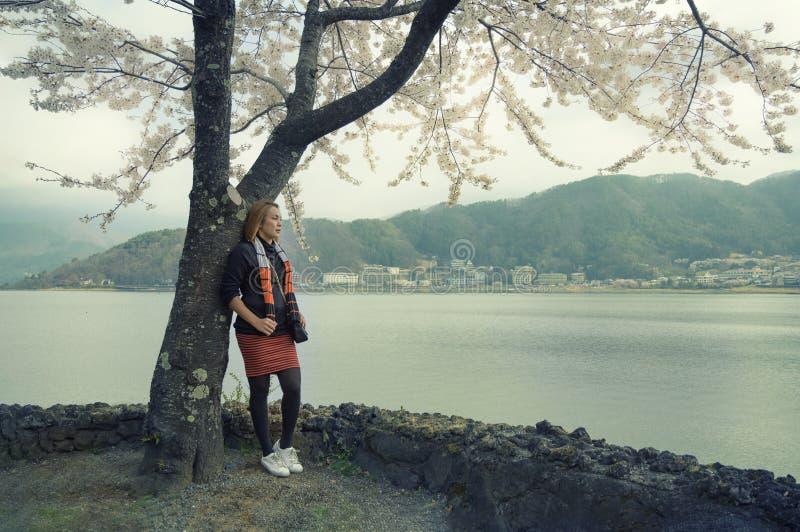 Situaci?n asi?tica de la mujer del viajero bajo ramas del cerezo japon?s de la flor del rosa fotografía de archivo libre de regalías