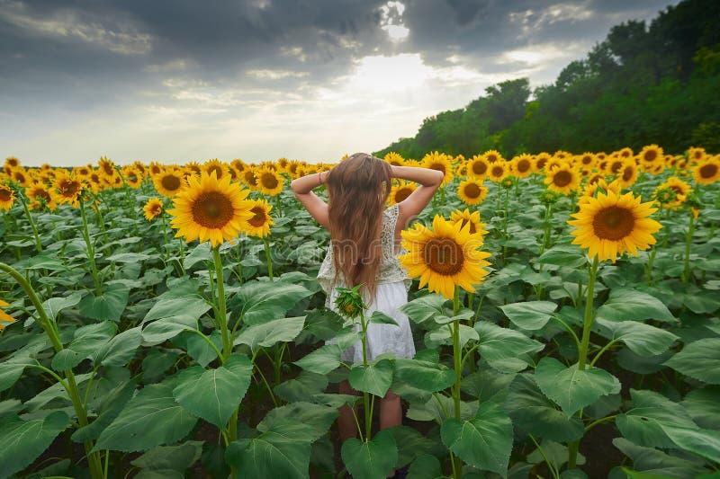 Situación de la muchacha en un campo del girasol fotografía de archivo