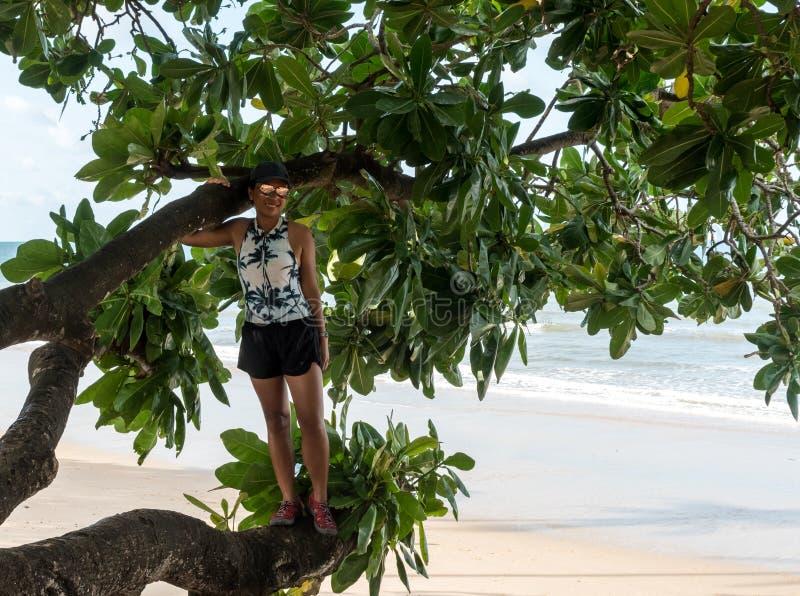 Situación de la mujer en árbol en la playa fotografía de archivo libre de regalías