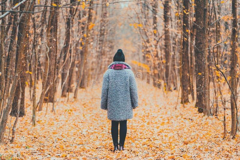 Situación de la mujer joven solamente a lo largo del rastro en la opinión trasera del bosque del otoño Viaje, libertad, concepto  foto de archivo