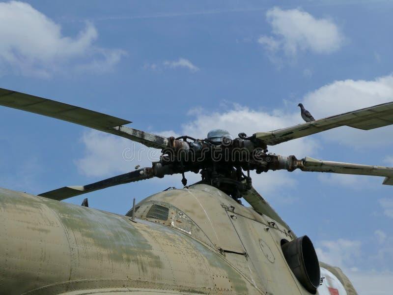 Situación de la paloma en la que está del propulsor s en el helicóptero imagen de archivo