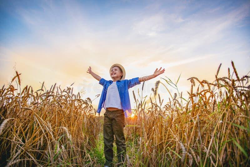 Situación del bebé en un campo de las manos abiertas de par en par de los oídos del trigo que miran en la distancia que sonríe co foto de archivo