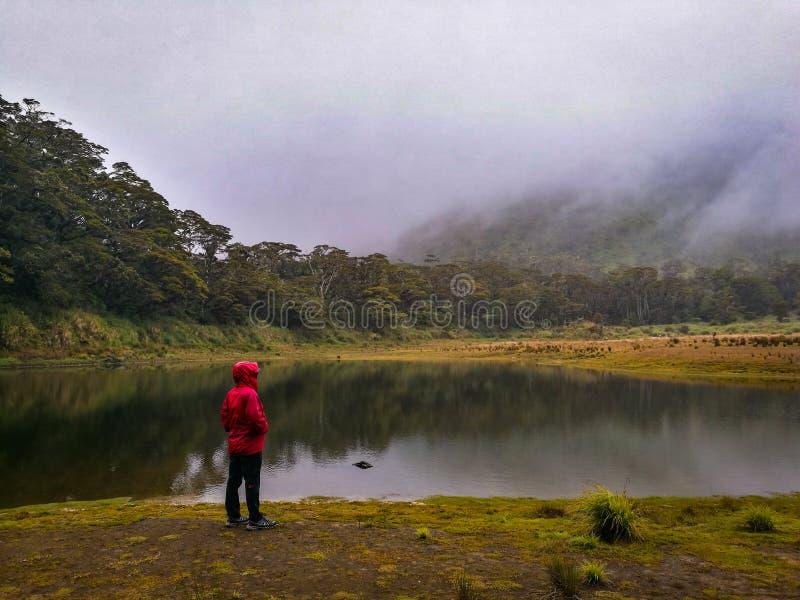 Situación del hombre joven cerca del lago de la montaña imagen de archivo libre de regalías