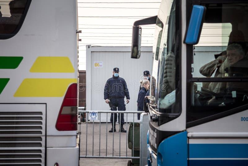 Situación servia del policía delante de los autobuses de los refugiados que esperan para cruzar la frontera de Croacia Serbia, en fotos de archivo