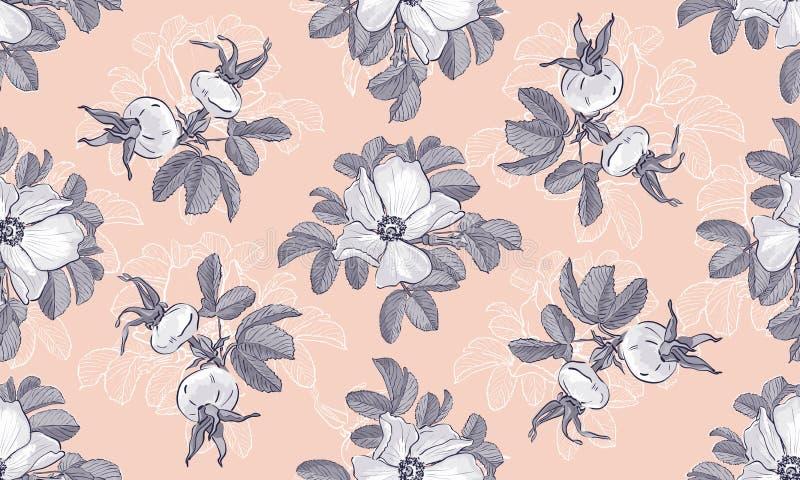 Situez le modèle floral Blogging de mode de roses sauvages d'en-tête, fond de fleur Fleurs grises sur un fond rose, vecteur illustration stock