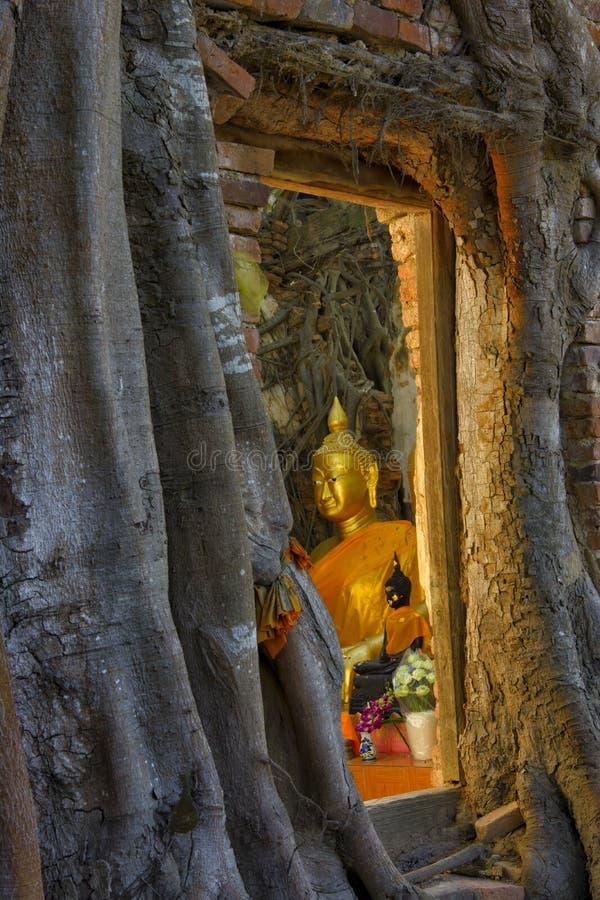 Sitz-Buddha-Altar im alten verlassenen Tempel am ANG-Zapfen, Thailand stockfotografie
