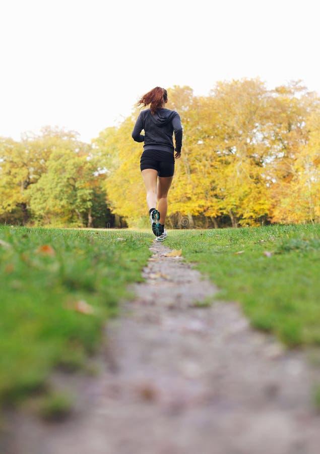 Sitz und gesunder weiblicher Athlet, die in Park laufen stockbild