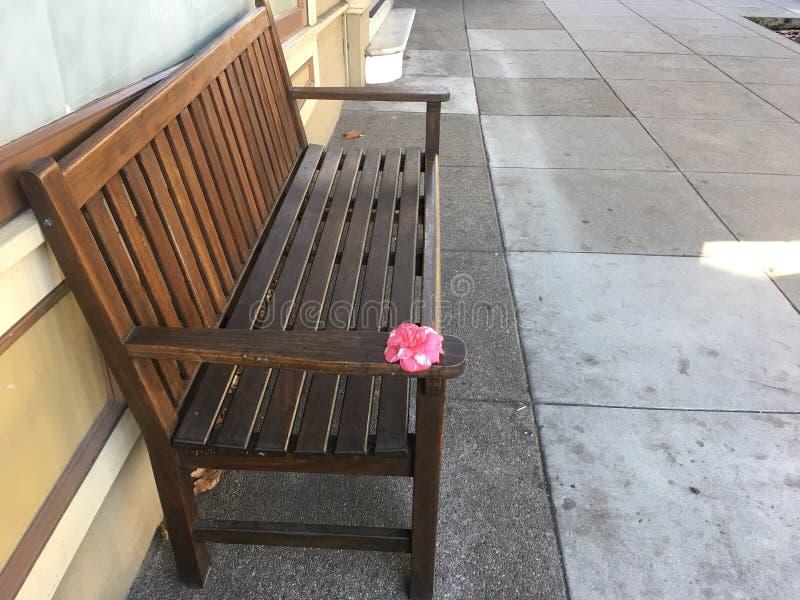 ` Sitzen bitte mit mir und werden getröstet, ` zart angebotene Rose, von der Bank lizenzfreie stockfotos