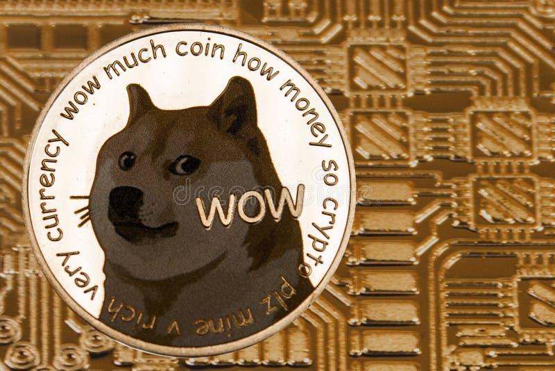 Siver-Münze Dogecoin auf dem Goldstromkreishintergrund lizenzfreie stockfotos