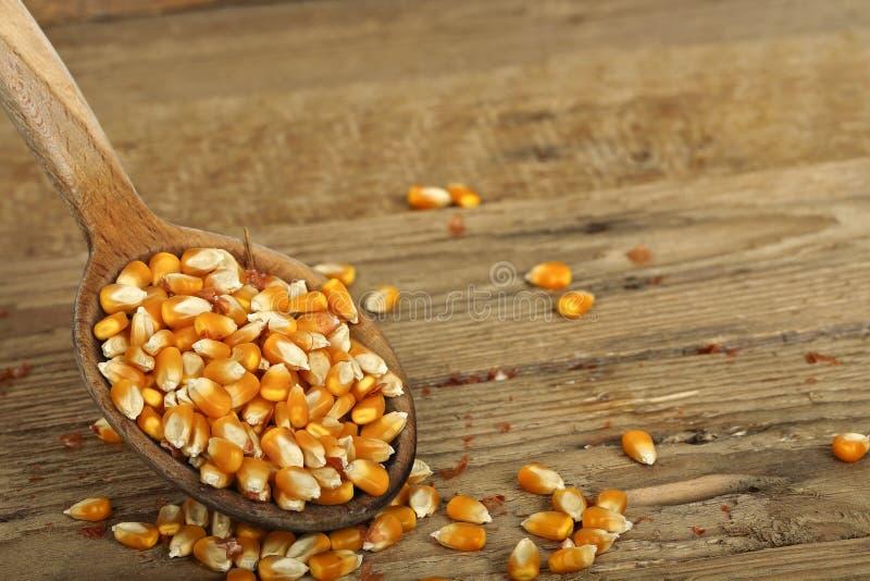 Siviera di cereale immagini stock