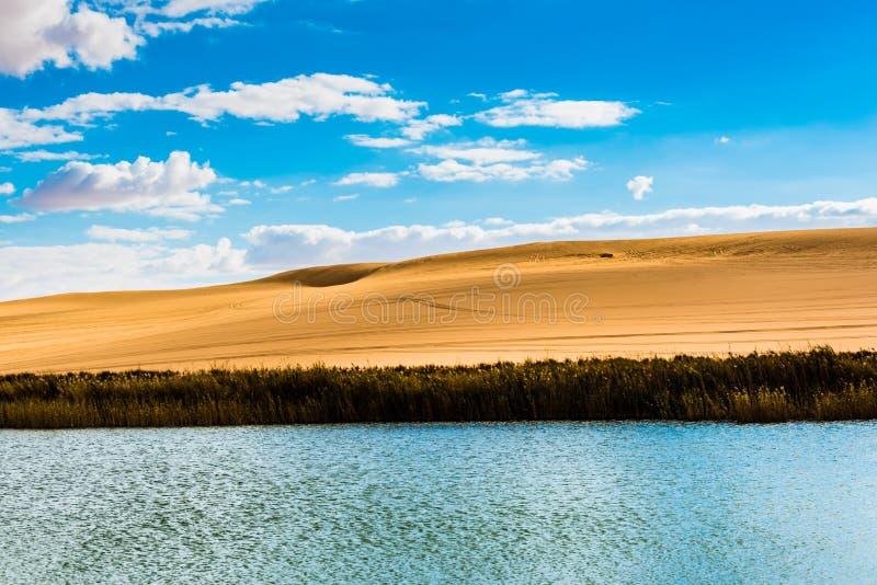 Siwa沙漠绿洲 库存图片