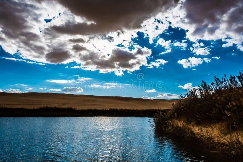 Siwa沙漠绿洲 免版税库存图片