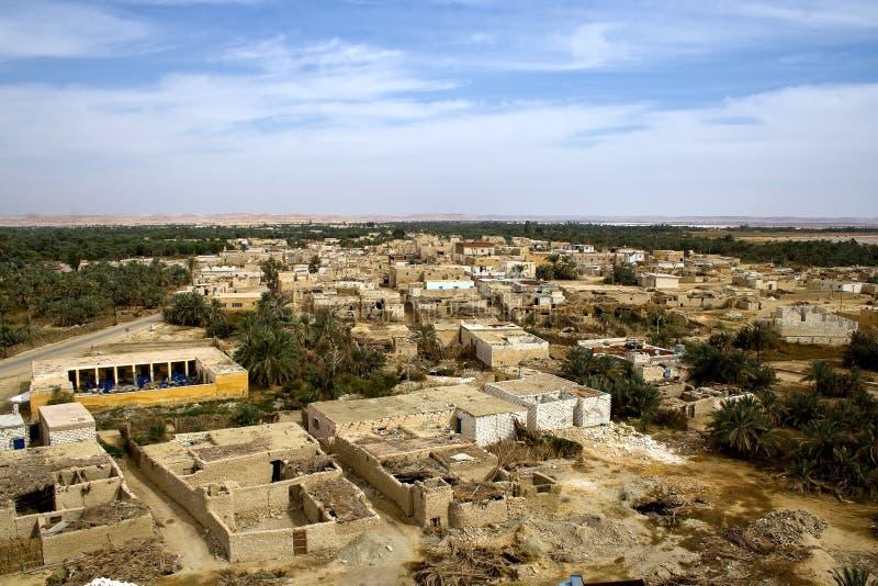 siwa оазиса стоковое фото