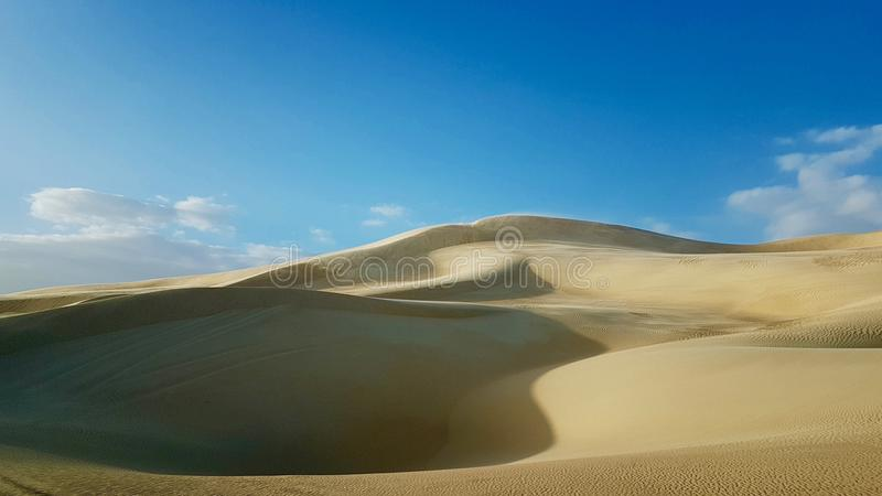 Siwa oas - skönheten av öknen arkivbilder