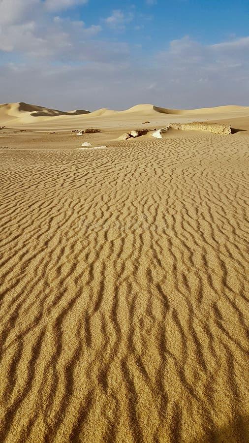 Siwa oas - skönheten av öknen arkivfoton