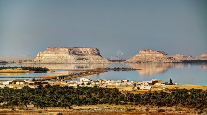 Siwa sjö och oas, Egypten royaltyfria foton