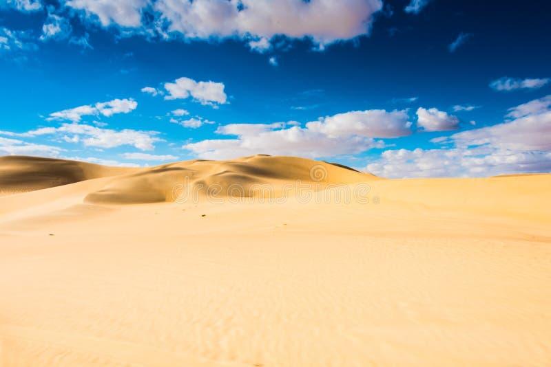 Siwa-Wüsten-Oase stockfotografie