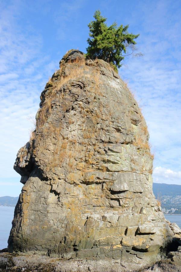 Siwash岩石和孤立树 库存照片