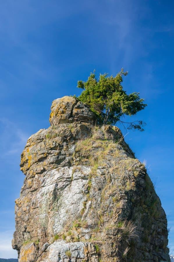 Siwash Rock royalty free stock photography