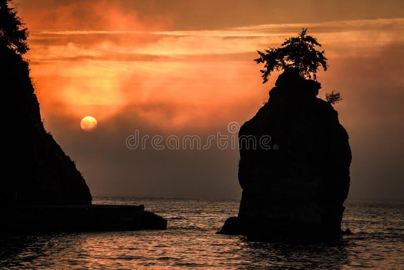 Siwashrots bij Zonsondergang stock afbeeldingen