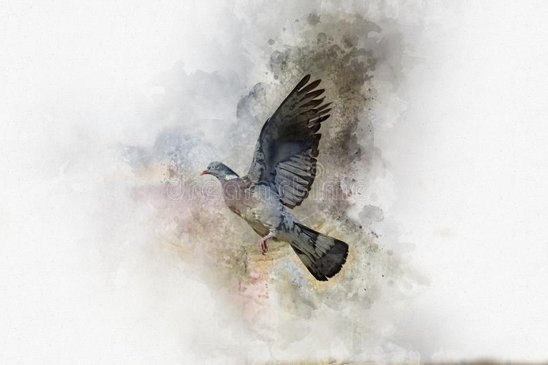 Siwieje gołąbki w locie na jaskrawym tle beak dekoracyjnego latającego ilustracyjnego wizerunek swój papierowa kawałka dymówki ak ilustracja wektor