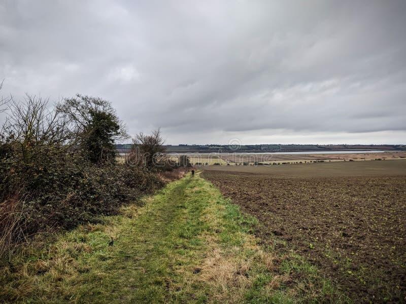 Siwieje krajobraz z błotnistym famland, Essex, UK obraz stock